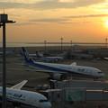 羽田空港の朝陽