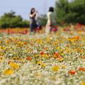 お花畑で記念撮影