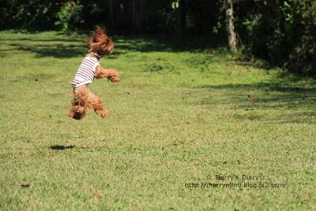 jump~♪