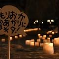 写真: 160212もりおか雪あかり 盛岡城跡公園 (1)