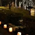 写真: 160212もりおか雪あかり 盛岡城跡公園 (4)