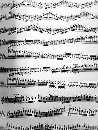 中野・江古田 バイオリン 個人レッスン ヴィオラ 吉瀬弥恵子 ワイズ音楽教室 自分の指使い