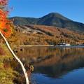 写真: 蓼科山