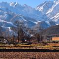 写真: 新雪・列車