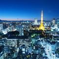 Photos: 夜のとばり