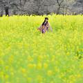 Photos: 春に舞い降りて