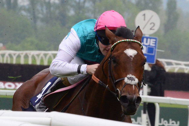 12.Frankel stroms to clear for win -Lockinge Stakes-