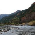 Photos: 初冬の山