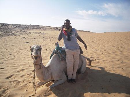 アスワーン西岸砂漠 らくだと携帯