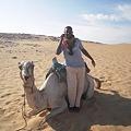 Photos: アスワーン西岸砂漠 らくだと携帯