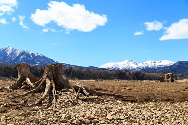 糠平湖とニベソツ山