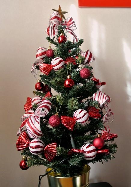 クリスマスツリー20154