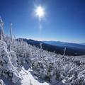縞枯の雪景色