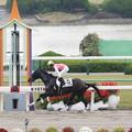 Photos: ジューンロディ(2015/11/07 京都7R 3歳上500万下)